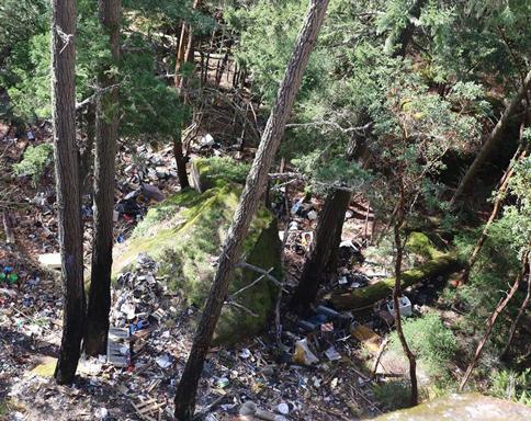Little Mountain Errington illegal garbage dumping